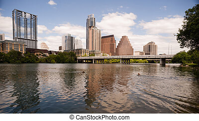 Dogs Swimming playing Colorado River Downtown Austin Texas -...