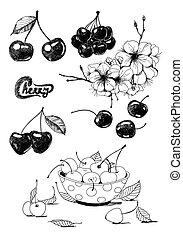 Cherries - Set of hand - drawn cherries, cherry blossom and...