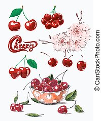 Cherries - Set of fresh ripe cherries, cherry blossom and...