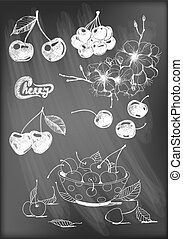 Cherries - Set of hand - drawn cherries, cherry blossom and...
