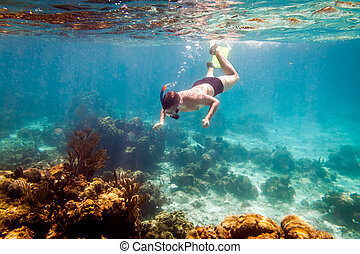 Snorkeler diving along the brain coral Warning - authentic...