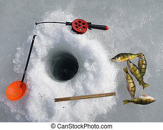 Ice fishing, equipment and catch of yellow perches