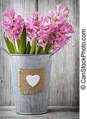 Hyacinth. - Pink hyacinth in a vase on a wooden table.