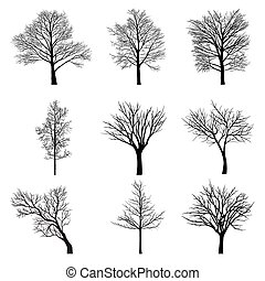 Basic RGB - Trees with dead branch