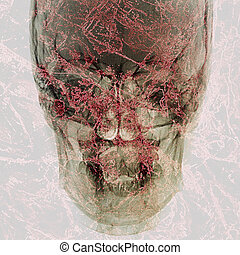 pathogen abstract background - pathogen abstract with x-ray...