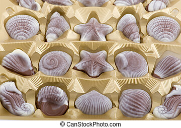chocolate candy seashells in box close up