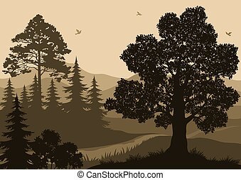Landscape, Trees, Birds and Mountains - Evening Forest...