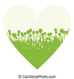 Tulips spring seasonal flower garden ecology concept...