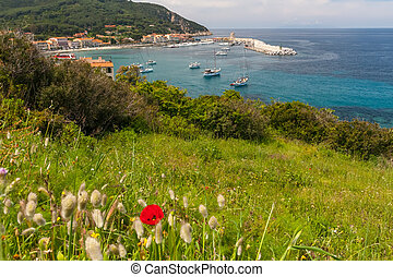 The village of Marciana Marina Elba island - The village of...