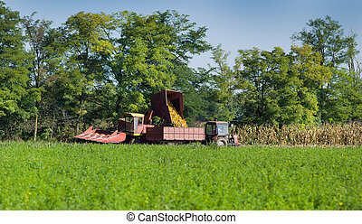 Corn harvester and tractor with trailer working on...