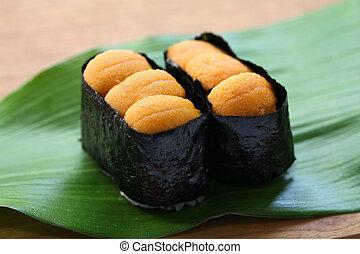 sea urchin roe, japanese sushi, uni