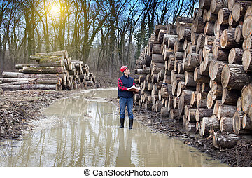 Lumber industry - Young lumber engineer standing with...