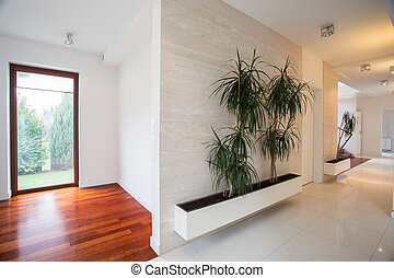 Bright hall in modern residence - Houseplants in bright hall...
