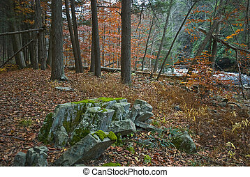 Rock Formation Woods - An interesting rock formation in the...