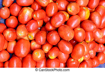 蔬菜, 番茄,  -