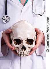 Doctor holding a skull in his hands