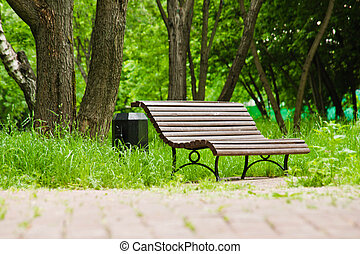 bench in the park on a sunny summer day