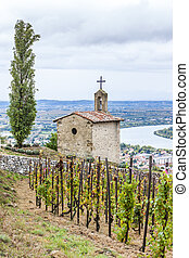 grand cru vineyard and Chapel of St. Christopher,...
