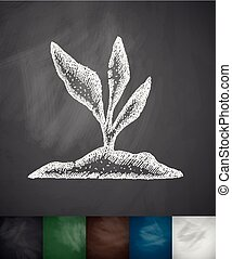root-crop icon. Hand drawn vector illustration. Chalkboard...