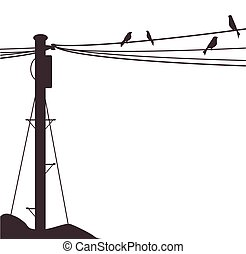 Telegraph Pole Birds - A few birds sitting on a telegraph...