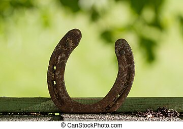 good luck - horseshoe standing upright against a green...