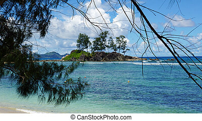 tropical island - small tropical island in the indian ocean