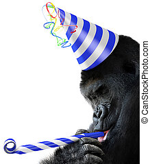 Gorilla party animal with b-day hat - Gorilla party animal...