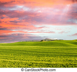 Sunset in Tuscany. Meadows in spring season