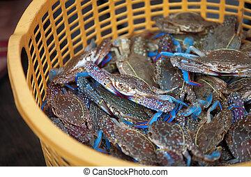 tradicional, peixe, Asiático, mercado