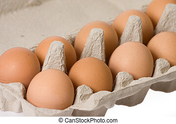 eggs in paper egg carton - eggs in the paper egg carton