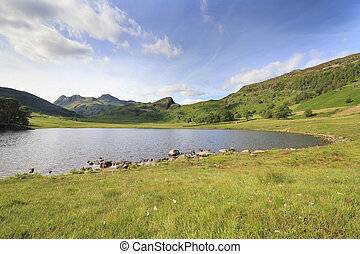 Blea Tarn - blea tarn in the lake district cumbria UK
