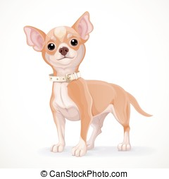Cute little chihuahua dog vector illustration isolated on...