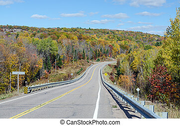 Road in Algonquin Park during the fall season