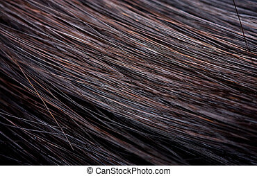 hair - beautiful shiny healthy style hair