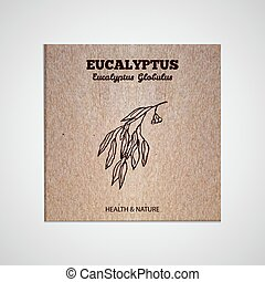 Herbs and Spices Collection - Eucalyptus Hand-sketched...