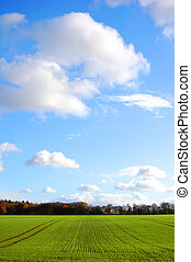 Green farm field - Large stretch of farm land on a sunny day