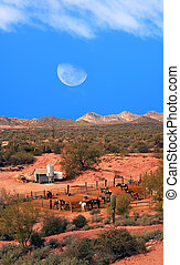Horses with Moon Rising - Horses in corral with moon rising...
