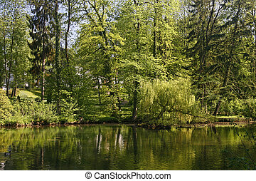 Pond in spring with water reflection, Georgsmarienhuette,...