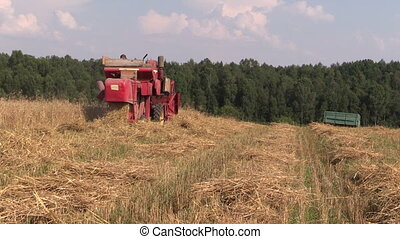 combine harvest wheat - Agricultural combine harvester cut...