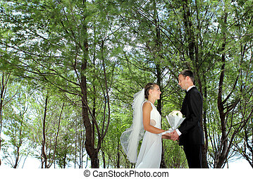 couple holding hand each other - romantic couple holding...