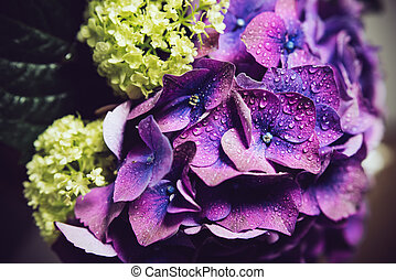 fresh flowers - Big bouquet of fresh flowers, purple...