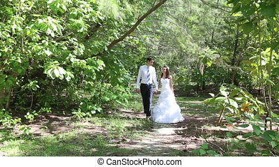 beautiful brunette bride and handsome groom walk among...