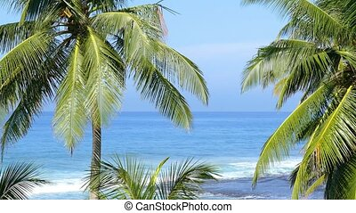 blue sea landscape with palm leaves