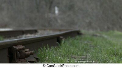 Railway tracks beside trail - Railway tracks beside...