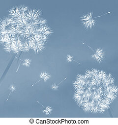 Dandelions in the wind, desktop background