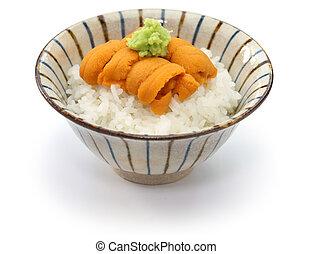 japanese sea urchin roe on rice