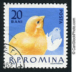 postmark - ROMANIA - CIRCA 1963: The image of a cock....