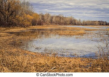 Great Lakes Coastal Wetlands - The beauty of a rare Great...