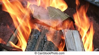 Wood burning in fire pit