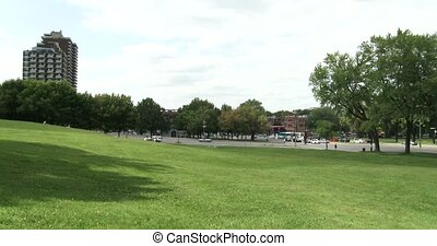 Parc du Mont Royal in Montreal - Green grass and big avenue...